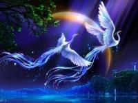 Как поймать за хвост синюю птицу счастья и удачи