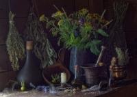 Любовная магия. Любовные зелья. Любовные травы и растения